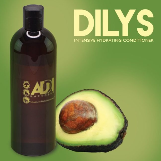 Dilys Intensive Hydrating Conditioner - Addi Naturals