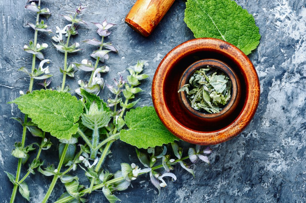 Fresh leaves of sage from Addi Naturals