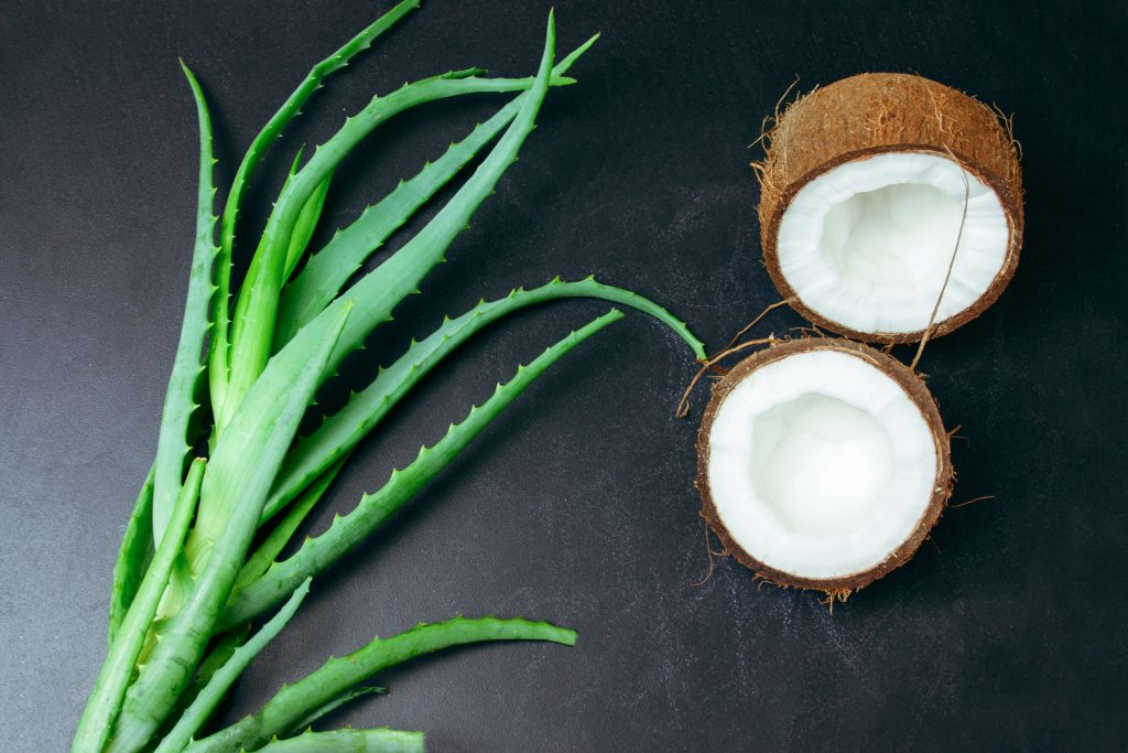 Benefits of Aloe Vera Juice And Coconut Water from Addi Naturals